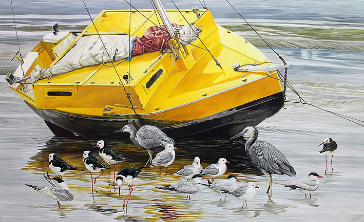 Craig Platt nz native bird artist, Tuna boat, Heron, Pied Stilt